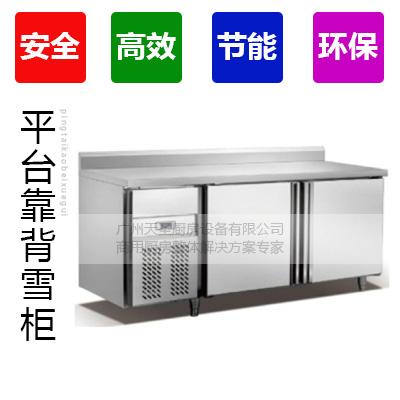 双门GN平台靠背雪柜,双门平台雪柜,双门平台冰箱,双门冰箱2