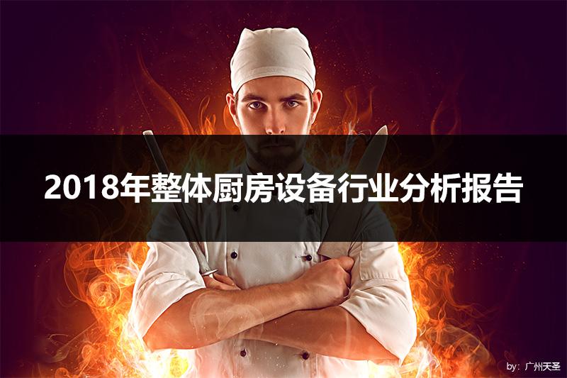 2018年整体厨房设备行业分析报告